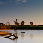 Jan 31 - Wetlands